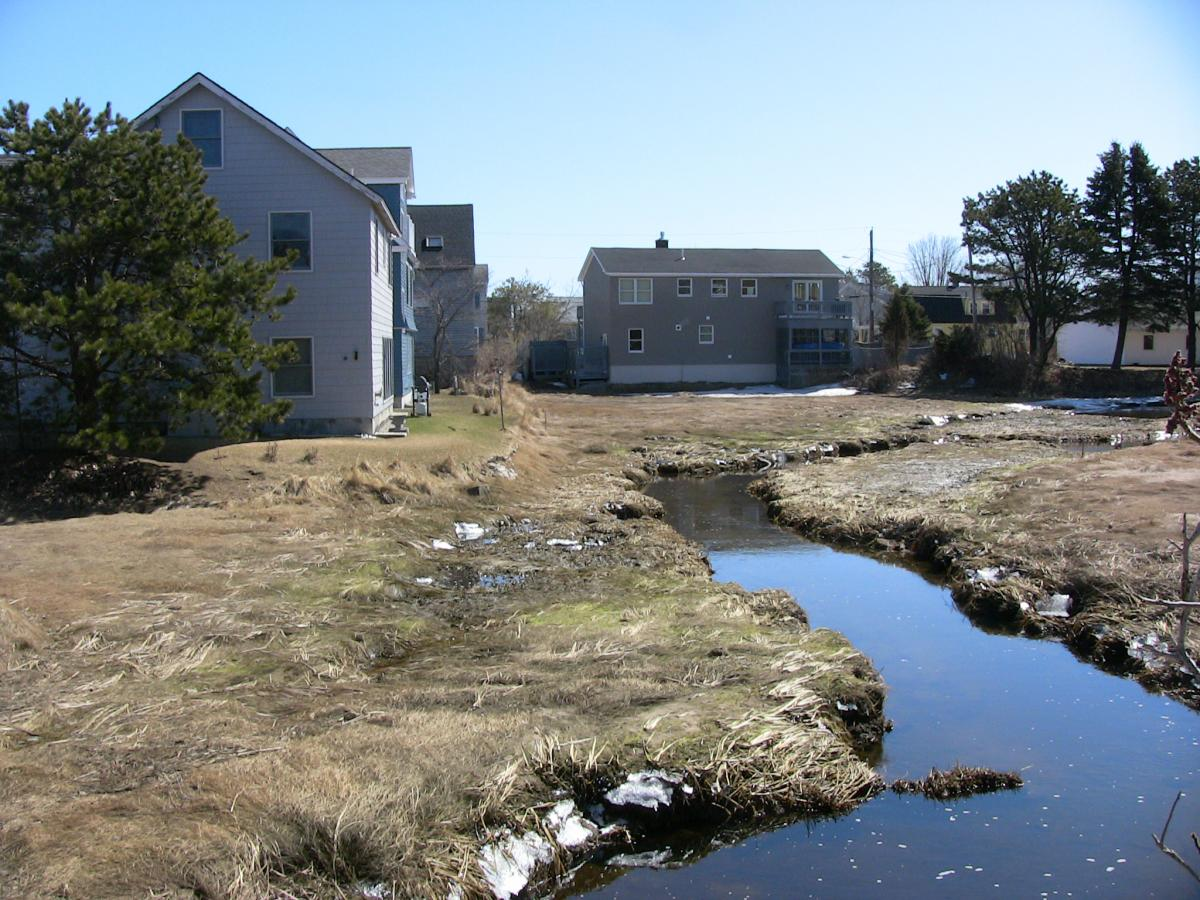 Late winter view of houses next to salt marsh with water-filled tidal creek