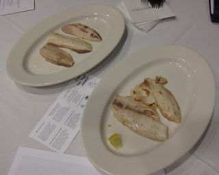 image of cooked fish filets on plates