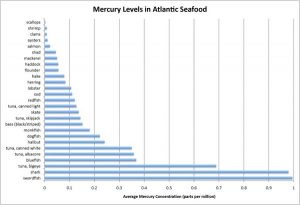 Mercury in Maine Seafood