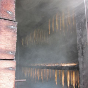 alewives in the smoker