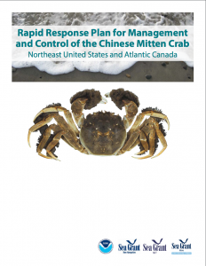thm_mitten-crab.png