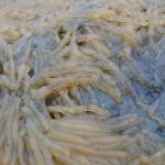A closeup shot of the gelatinous mass.