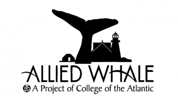 Black and white Allied Whale logo