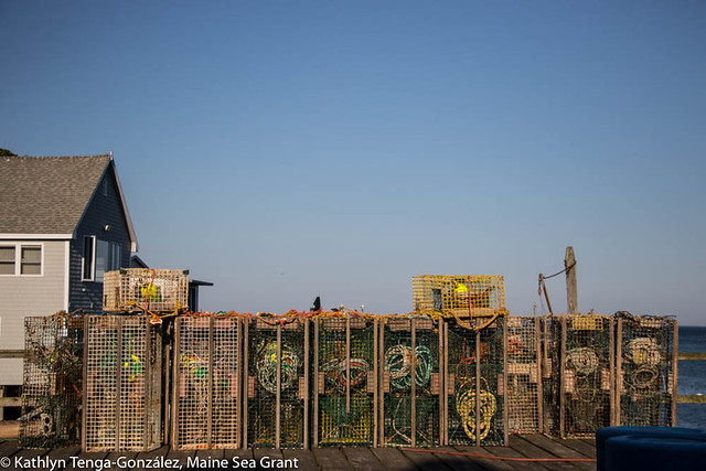 lobster traps beside a house under a blue sky