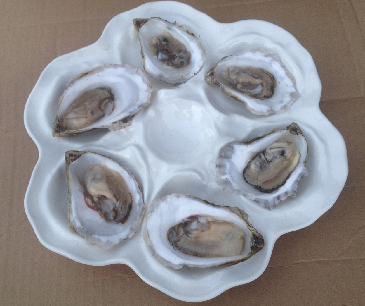 Oysters grown and sold by a 2013 student