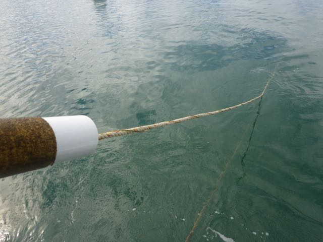a rope going into the water with a spiral along its length