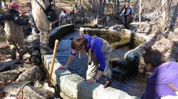 Several people working on a fish ladder