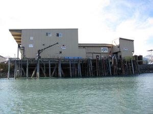 salmon processing plant in valdez harbor