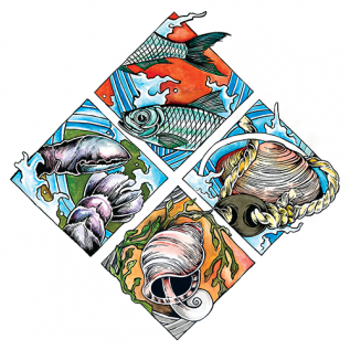 Downeast Fisheries Trail logo