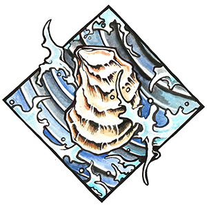 hand drawn oyster