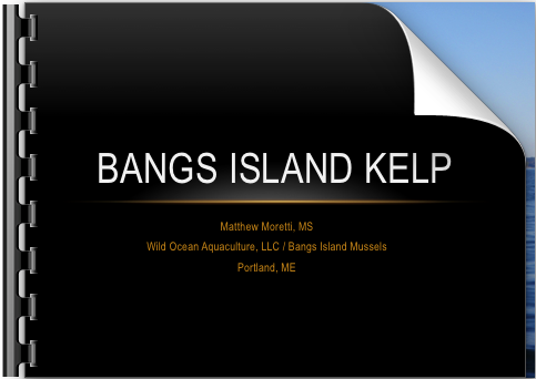 Cover slide for Bangs Island Kelp presentation