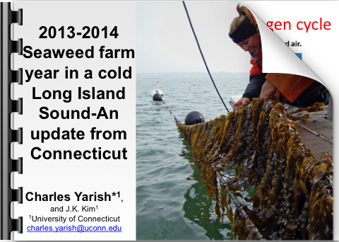 Cover slide for Seaweed farm year in a cold Long Island Sound presentation