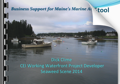 Cover slide for Business Support for Maine's Marine Algae Sector Presentation