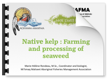 Cover slide for Native kelp presentation