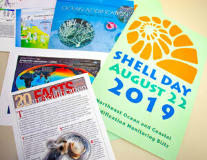a pile of leaflets for shell day
