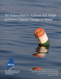 thumbnail coverr for the 2019 MOCA action plan