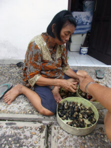 A woman sitting on the ground processing shellfish