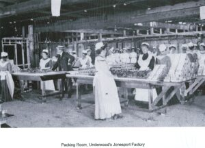 black and white photo of a sardine packing room, workers at long tables
