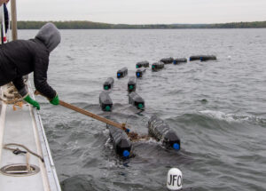 a person tending aquaculture equipment on the water