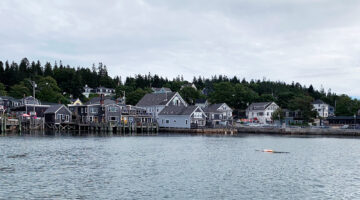 View of the coast of Stonington from the water