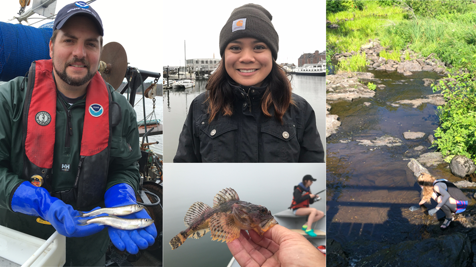 featured image for Coastal Conversations Radio Program: Marine and Freshwater Ecosystems: Ecological Connections and Research Methods