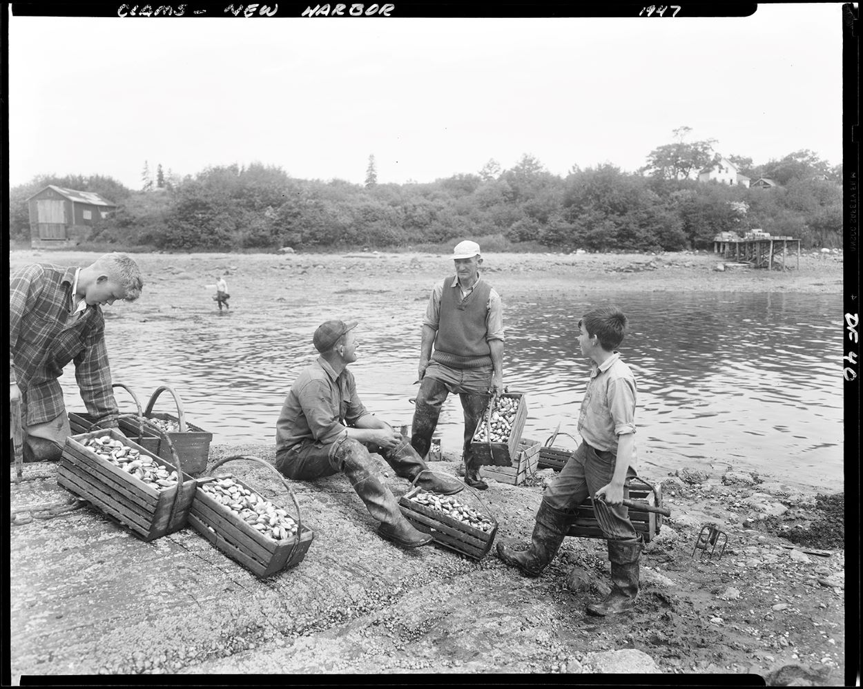 A man and a boy, each holding a basket full of shellfish, talk to a man sitting on the bank of New Harbor. Another man stands to the left and is looking down at multiple baskets of shellfish. Photo credit Maine State Archives.